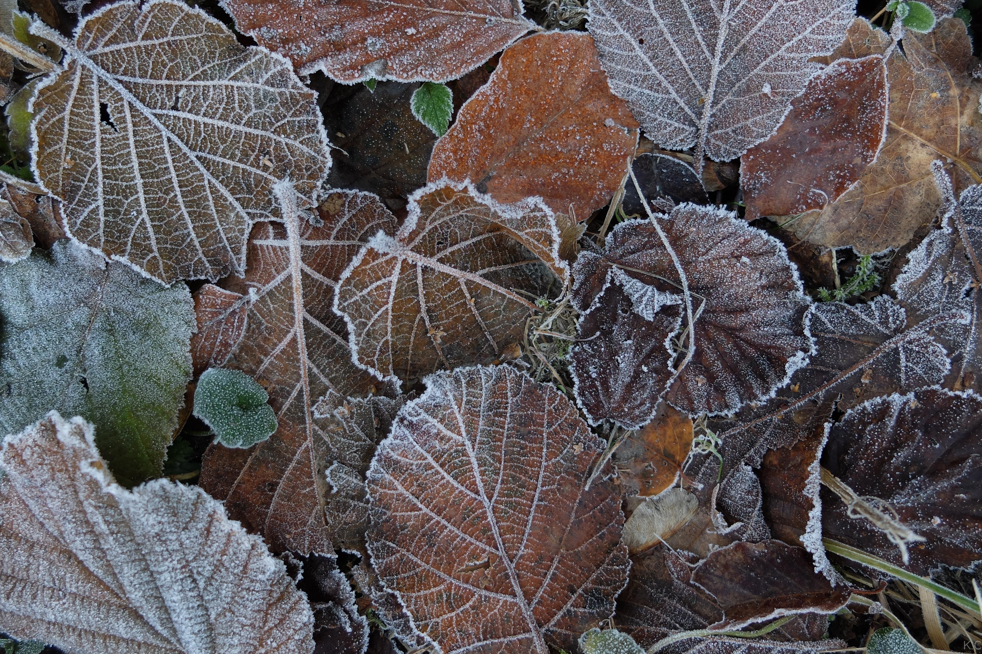 Winterlaub 2
